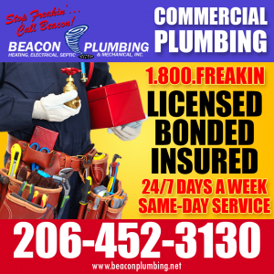Commercial Plumber Camano Island