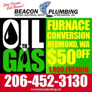 Oil to Gas Furnace Conversion Algona