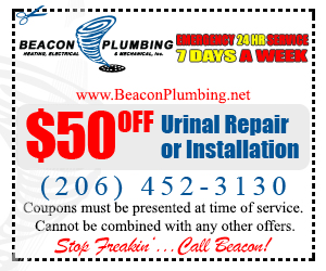 Urinal-Repair-Renton